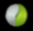 pacem_logo_rev_2 (2).png