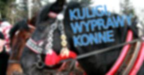 Kuligi i wyprawy w zaprzęgu konnym