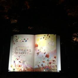 Visit Japan Promotional Collaboration | Visit Japan Promotion / PR vol.2