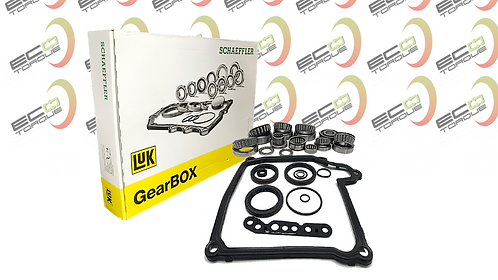 02E DQ250 PRO BEARINGS AND SEALS OVERHAUL REBUILD KIT