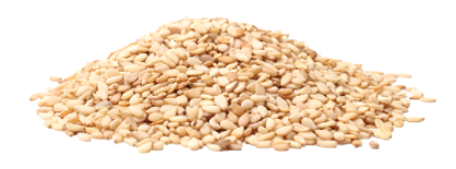 SaniMoist_ingredient_sesame.png