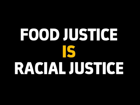 To not acknowledge the importance of race and racism in our work, is to not understand it.