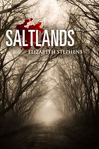 Saltlands v2.jpg