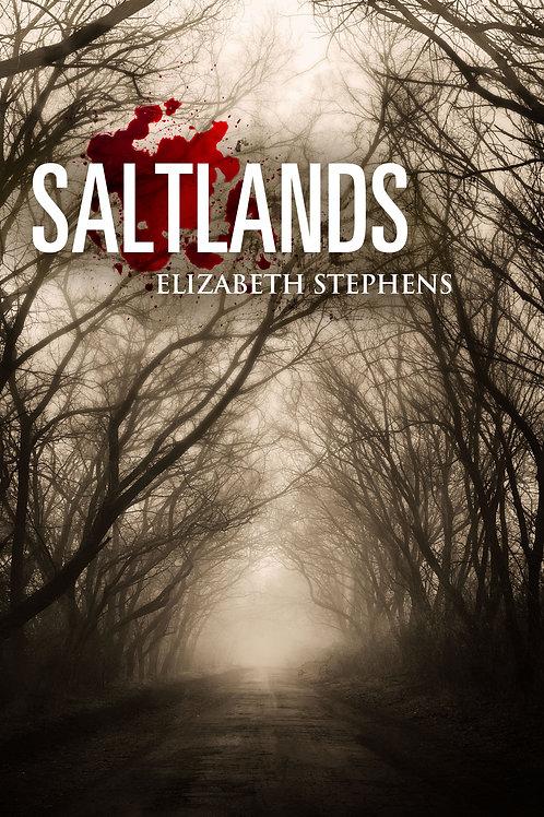 Saltlands: A Post-Apocalyptic SciFi Romance
