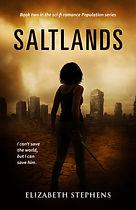 Saltlands v4.jpg
