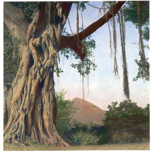 "Around the Hill, Hand Painted Palladium Print, 15""x19"", Thierry Cardon"