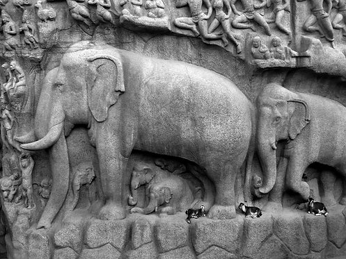 The real and the carved, Mahabalipuram 2013
