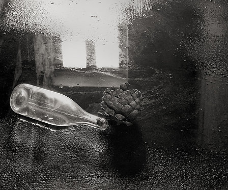 """Seed and Wine Bottle, Archival Pigment Print, 12""""x10"""", Abul Kalam Azad, 1994"""