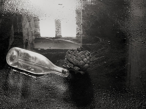 "Seed and Wine Bottle, Archival Pigment Print, 12""x10"", Abul Kalam Azad, 1994"
