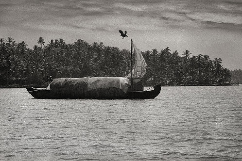 Lake Ashtamudi, 1985