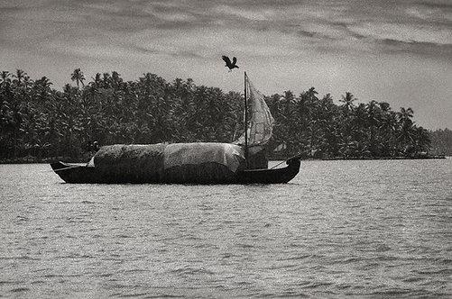 Lake Ashtamudi, 1985