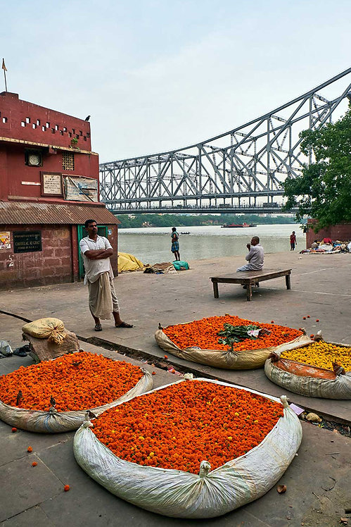 Flower and bridge