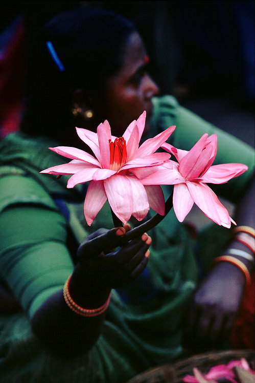 """Lady with a Lotus, Archival Pigment Print, 8""""x12"""", Dinesh Khanna"""