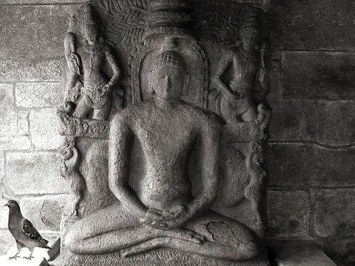 Jeenadevan (Mahavira) with a pigeon, 2012