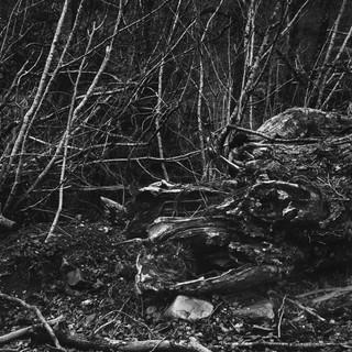 Inauteriak © Yannick Cormier 2020