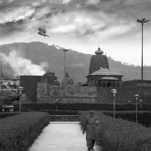 Himalayan Summer, 2010