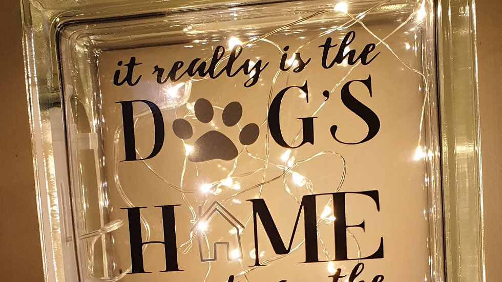 This is the dogs home light block