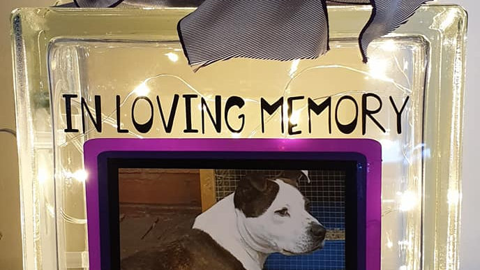 Pet Memorial Photo Light Block