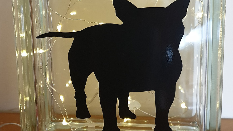 Bull terrier light block