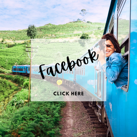 Facebook for Paradise Travel