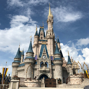 The 5 Disney World Planning Tips Used By Your Travel Agent