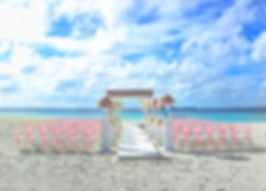 Destination Weddings are a great way for couples to bring together their family and friends, in a beautiful location, to witness the exchange of their vows. Paradise Travel planners are ready to help you plan your wedding in a beautiful location!