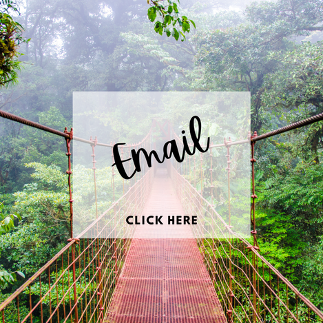 Email Paradise Travel