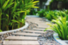 Garden-Maintenance-Services-Cairns-1024x