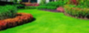 Nice-Lawn-1056x390.png