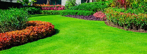 Nice-Lawn-1056x390.png