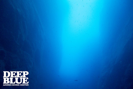 Deep Blue Azores Diving Center