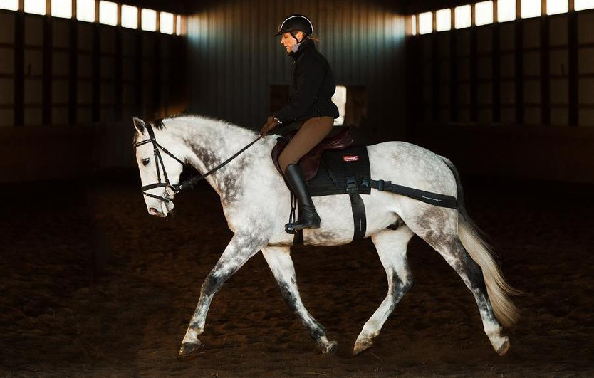 Improve Your Horse's Core!  See the event listing for info. on a Live demonstration on July 21,