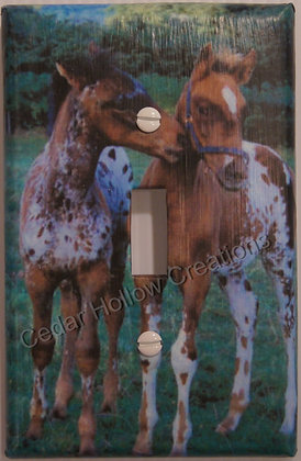 Appaloosa Foals-Light Switch Cover