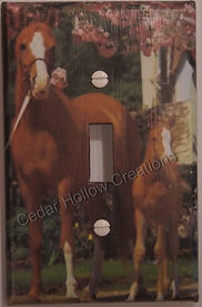 light switch covers,handmade,appaloosa,foal,mare,horse