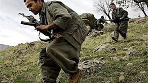 PKK in action - III | November 2018