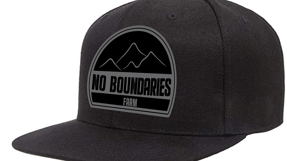 NBF Logo SnapBack Hat -Black & Grey