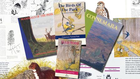 Natural History Book Design & Illustration