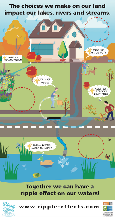 Digital Illustration - Dane County Land & Water Resources Department