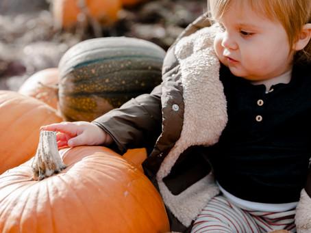 P..p..p...pick up a pumpkin?