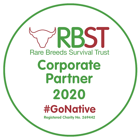 RBST Corporate Partner Logo ROUND 2020(2