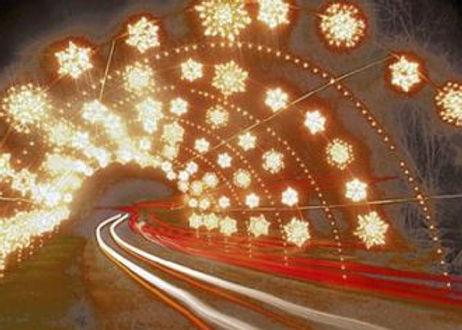 Winter Festival of Lights.jpg