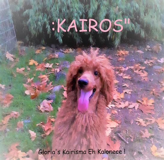 KAIROS7.jpg