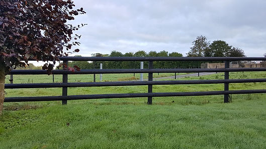 larch post and rail timber fence