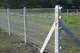 concrete post and wire fence