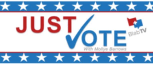 Just Vote.jpg