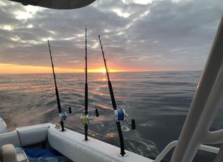 Early Bluefin Trip