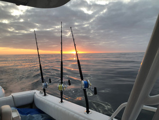 Early Bluefin Trip