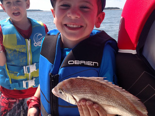 Kids Camp Weakfish Limit