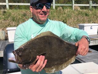Doormat Fluke & Weakfish