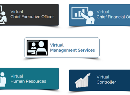 Virtual Management Services